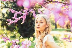 Spring bloom concept. Girl on dreamy face, tender blonde near violet flowers of judas tree, nature background. Lady. Walks in park on sunny spring day. Young royalty free stock photos