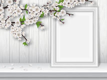 Spring blooming cherry branch and photo frame on a white table Stock Image