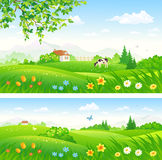 Spring blooming countryside
