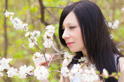 Spring blooming and girl Stock Images
