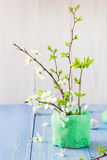 Spring blooming twigs wooden table Royalty Free Stock Photography