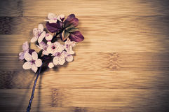 Spring blossom. Tree branch in a full spring blossom on a wooden background Royalty Free Stock Photos
