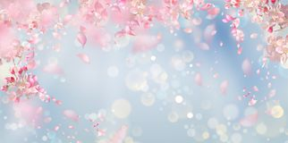 Spring Blossom Background. Flying petals on a blue background. Flowers and petals in the wind. Vector background with spring plum or cherry blossom royalty free illustration