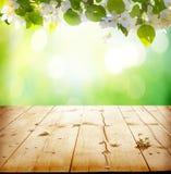 Spring blossom background Stock Photo