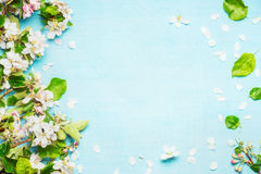 Spring blossom on blue turquoise background, top view Royalty Free Stock Photo