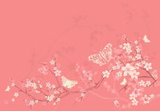Spring blossom and butterflies background Stock Photos