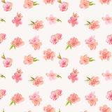 Spring Blossom Flowers Background Royalty Free Stock Photos