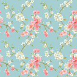 Spring Blossom Flowers Background royalty free illustration