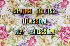 Spring blossom nature future optimism. Typography letterpress phrase flower flowers positive attitude thinking beauty life love relationship romance help royalty free stock images