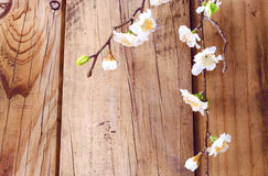 Spring blossom tree branches on wooden background. Spring blossom tree branches with white flowers placed vertically on weathered rustic medium tone wooden stock photos