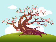 Spring blossom tree illustration Stock Photos