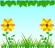 Spring Blossom Vector Background Royalty Free Stock Photos