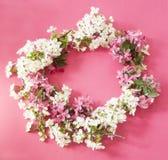 Spring blossom wreath stock image