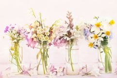 Spring blossoming/springtime blooming flowers on pink pastel background royalty free stock images