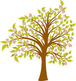 Spring blossoming tree, vector Royalty Free Stock Photography