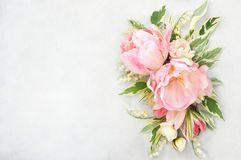 Spring blossoming tulips, bokeh flower background, pastel and soft floral card, selective focus, toned royalty free stock image