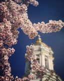 Spring Blossoms in Kiev Ukraine. The Ukrainian spring is a wonderful time to visit the local churches and to celebrate Easter. nnKiev or Kyiv is the capital and stock images