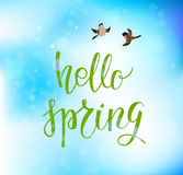 Spring blue backdrop 04. Spring green lettering. Spring nature template for design banner,ticket, leaflet, card, poster and so on. Handwritten inscription Stock Images