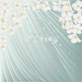Spring blue background with blossoms jasmine vector Royalty Free Stock Photo