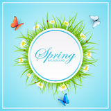 Spring blue background with grass and butterflies Stock Images