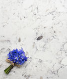 Spring blue wild flowers Scilla bouquet on Delta White quartz co. Spring blue wild flowers Scilla bouquet on Delta White quartz kitchen worktop Stock Photos