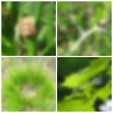 Spring blurred backgrounds Stock Photography