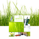 Spring board concept Royalty Free Stock Photo