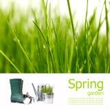 Spring board concept Stock Photo