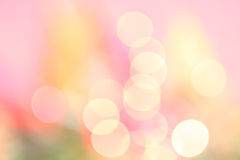Spring Bokeh Royalty Free Stock Photo