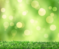Spring Bokeh. Grass with spring bokeh background Royalty Free Stock Photo