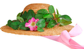 Spring Bonnet Royalty Free Stock Photography