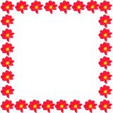 Spring border. Spring and summer border red flowers isolated on a white background royalty free stock images