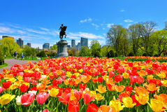 Spring in Boston Public Garden. Boston Public Garden. George Washington Statue surrounded by tulips, tourists and beautiful spring colors Stock Image
