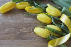 Spring bouguet of yellow tulips with green leaves and satin yellow ribbon close-up on wooden brown background. Stock Photo