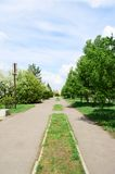 Spring boulevard in city, Omsk, Russia. Royalty Free Stock Photo