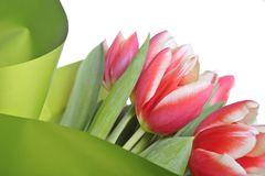 Spring bouquet Stock Photo