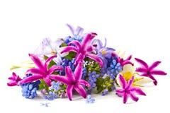 Spring bouquet Stock Photos