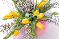 Spring bouquet Stock Images