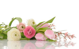 Spring bouquet Royalty Free Stock Photography