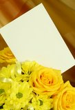 spring bouquet with blank card Stock Photos