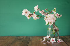 Spring bouquet of cherry tree branches Stock Images