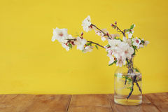 Spring bouquet of cherry tree branches Stock Photo