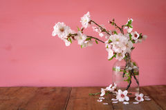 Spring bouquet of cherry tree branches Royalty Free Stock Photography