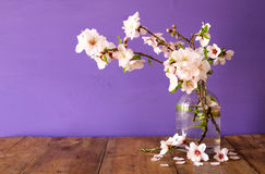 Spring bouquet of cherry tree branches Royalty Free Stock Photo
