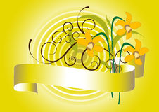 Spring bouquet of  daffodil.Background.Postcard Royalty Free Stock Photography