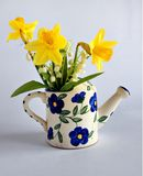 Spring bouquet with daffodils Stock Photo