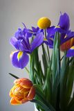 Spring bouquet detail with tulips and irises royalty free stock image