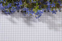 Spring bouquet of forget-me colors on the notebook on the wooden Stock Images