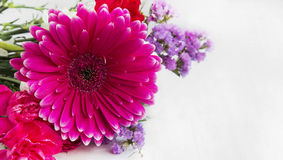 Spring bouquet with gerbera and purple flowers Royalty Free Stock Photography