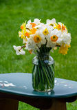 Spring bouquet in a jar royalty free stock images